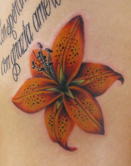 Tattoo inspiration tiger lily on the ribs tattoo uploaded for Tiger lilly tattoos